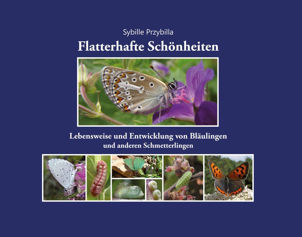 Buchcover Titelseite